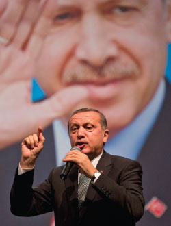 Turkish Exceptionalism and its Critics